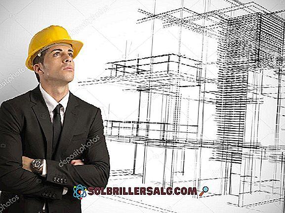 Que fait un architecte?  Fonctions et activités