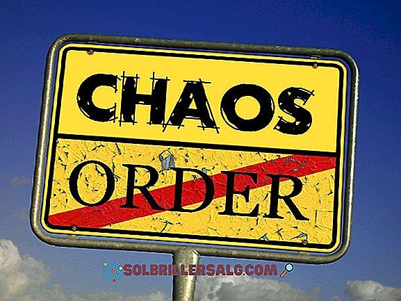 Desorganização Social: Teoria, Formas e Exemplos