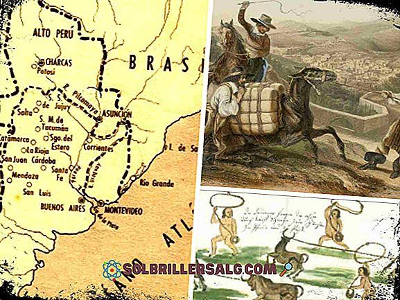 الاقتصاد الاستعماري في القرن السابع عشر (الوصايا)