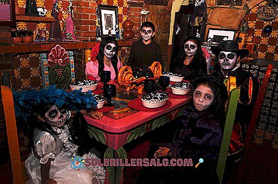 5 Tradisi dan Bea Cukai Saltillo