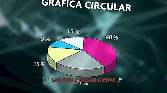 9 dažniausiai naudojami grafinių organizatorių tipai
