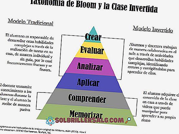 Tassonomia di Marzano: cos'è e cosa è