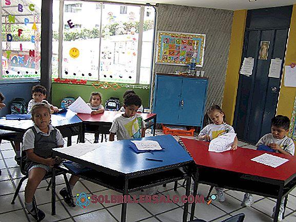 Mokymosi aplinkos: apibrėžimas, tipai ir pavyzdžiai