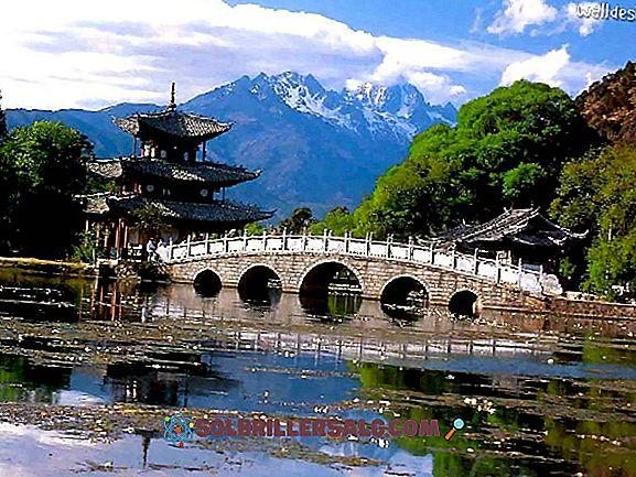 As 11 principais atividades econômicas da China