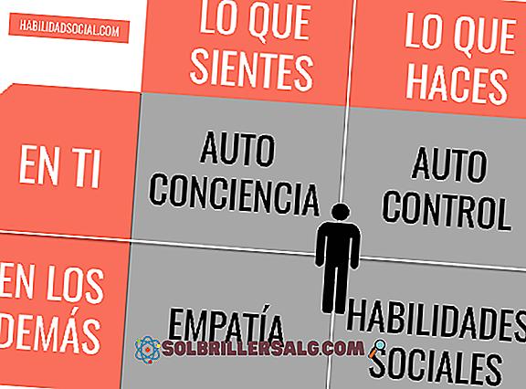 Os 6 Tipos de Emoções Básicas (Classificação com Imagens)