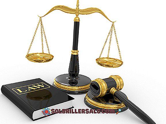 Hypothèse légale: classification et exemples