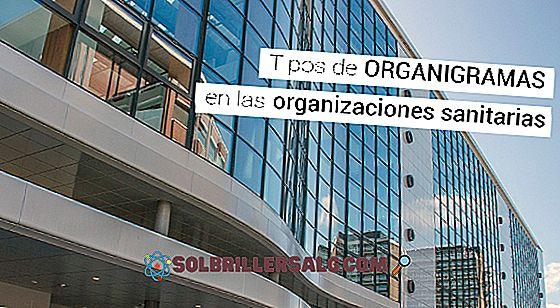 Perusahaan swasta: karakteristik, jenis, bagan organisasi, contoh