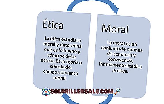 Морална осведоменост: характеристики, какво служи и примери