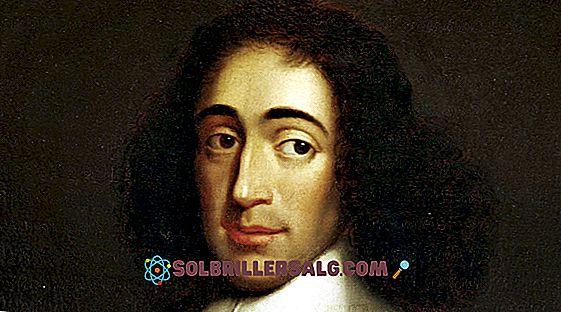 Gottfried Leibniz: Biografia, contributi e opere