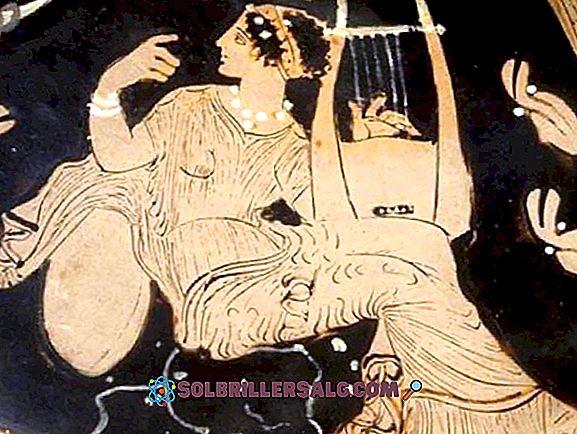 Die 10 Arten der Liebe nach den Griechen Was ist deine?