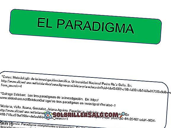 Sociocritinė paradigma tyrime: istorija, charakteristikos, pavyzdžiai