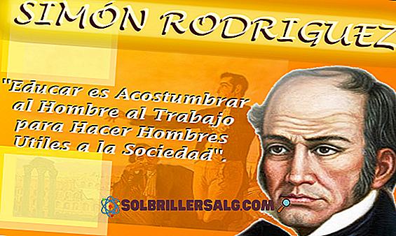 28 Pensieri di Simón Rodríguez Inspiradores