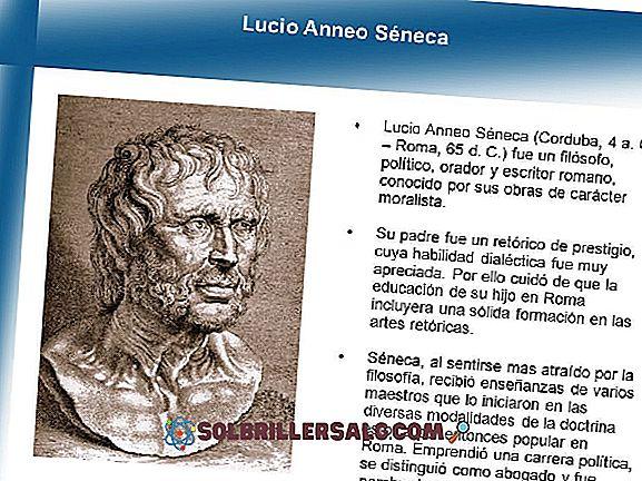 философия - Какво е стоицизмът на Лусио Анео Сенека?