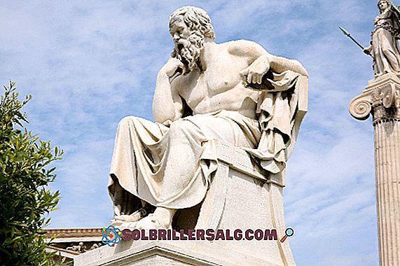 Milet Masalları: Biyografi, Katkılar, Düşünce