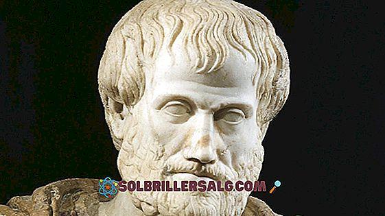 Democritus: Biografi, filosofi och bidrag