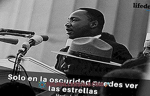 Martin Luther King Jr hade affrer mer ver 40 kvinnor