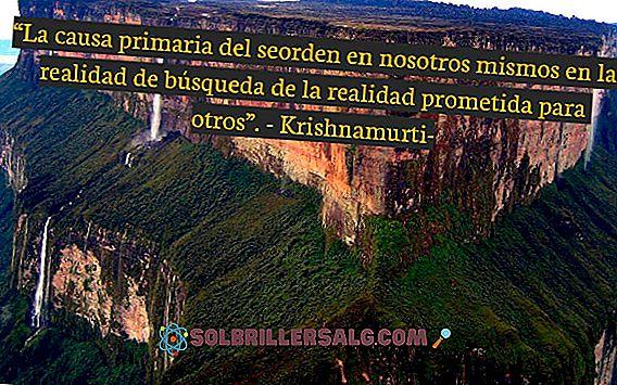 As 85 melhores frases de Krishnamurti (medo, vida, amor ...)