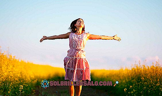 frases de motivação pessoal - As 100 melhores frases do amor-próprio