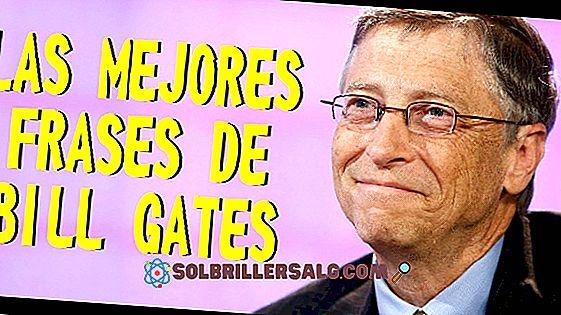 De 100 beste setningene ved Bill Gates