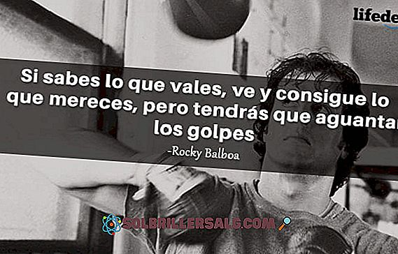 As 30 Melhores Frases De Rocky Balboa