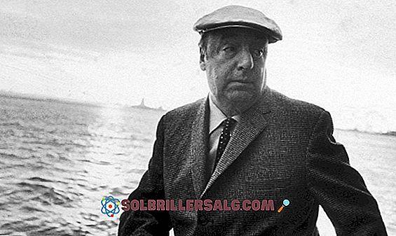 Pablo Neruda Famous (Aşk, Yansıma, Mutluluk) tarafından 100 İfade