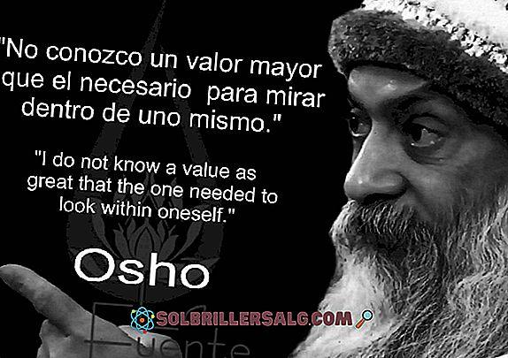 Cele mai bune 100 fraze Osho