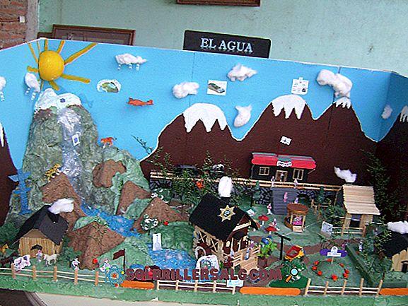 Kaip yra Kolumbijos reljefas?