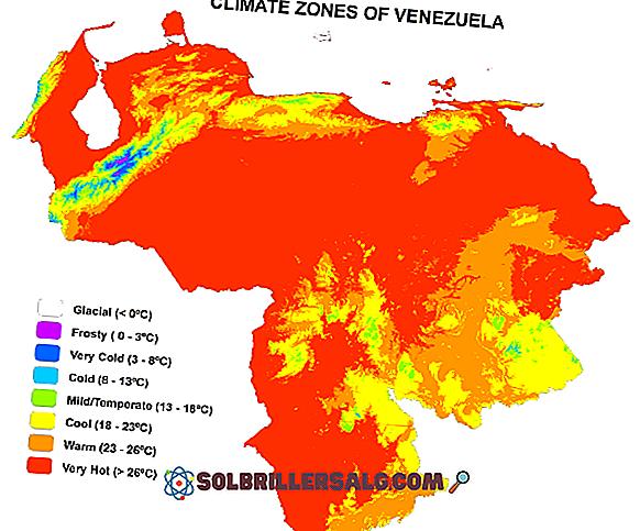 geografia - Le più importanti regioni climatiche del Venezuela