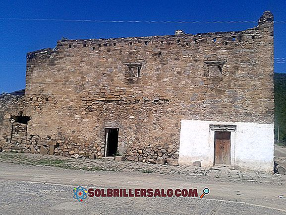 5 rzek Hidalgo Principales