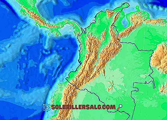 geografia - Como é o alívio da Venezuela?