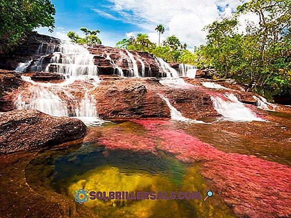 Jakie są najważniejsze rzeki w Kolumbii?