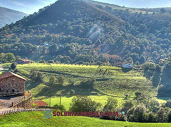 Релеф на Сантандер (Колумбия): Най-важните характеристики