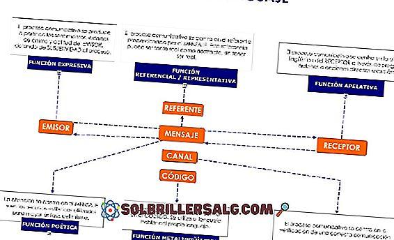 keterampilan sosial - 6 Fungsi Bahasa dan Karakteristiknya