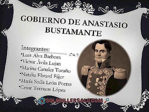 Vicente Guerrero: Biografie