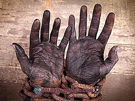 Kolombiya'da Kölelik: Tarih ve Kaldırılma