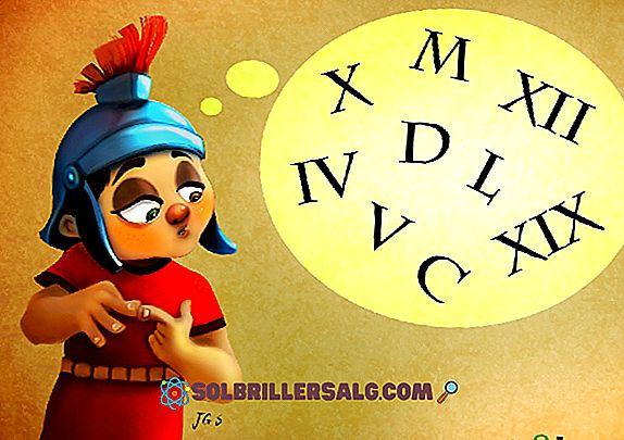 Правила на египетските числа