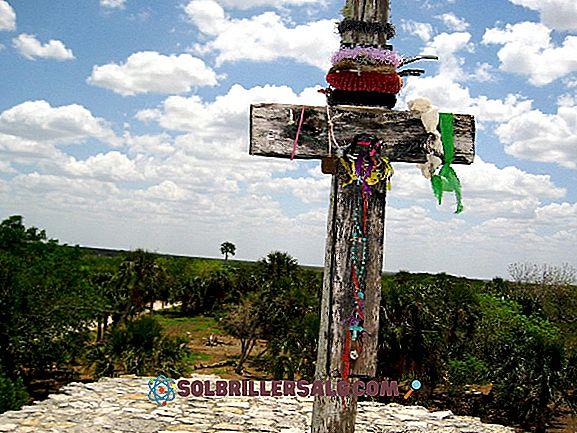Cele mai importante 5 zone arheologice ale lui Yucatan