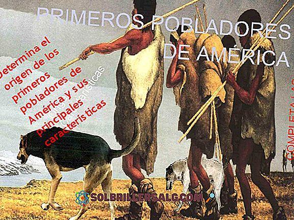 5 Ferramentas dos Primeiros Colonos da América