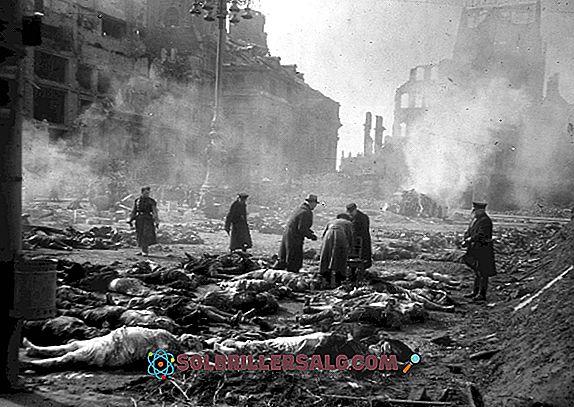18 ผลกระทบของสงครามโลกครั้งที่สองทางเศรษฐกิจและสังคม