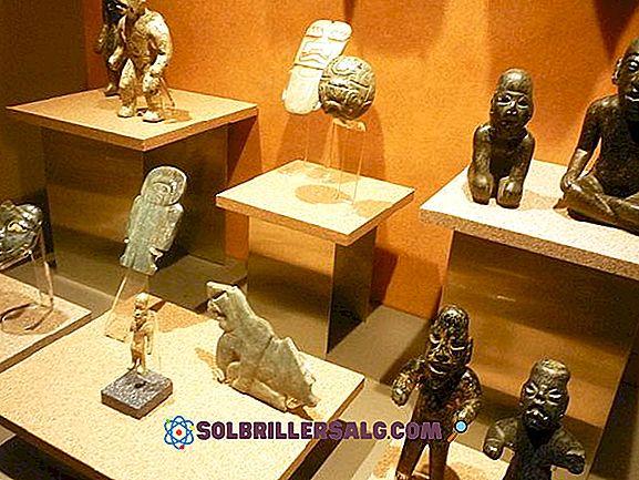 Senovės Olmeco prekyba ir ekonomika