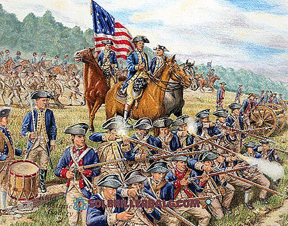 5 خصائص المستعمرات في أمريكا
