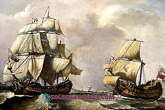 ประวัติศาสตร์ - 6 สาเหตุของการเดินทางสำรวจของชาวยุโรปสู่อเมริกา