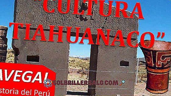 Култура на Тихуанако: Архитектура, религия и основни характеристики