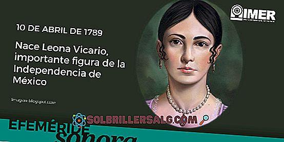 Leona Vicario: Biografi