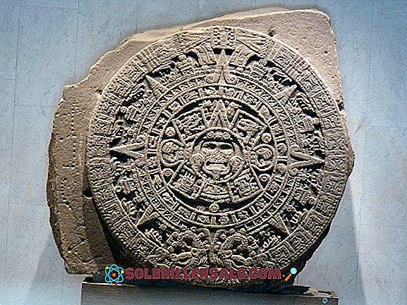 5 elementi comuni di Mexicas e Incas