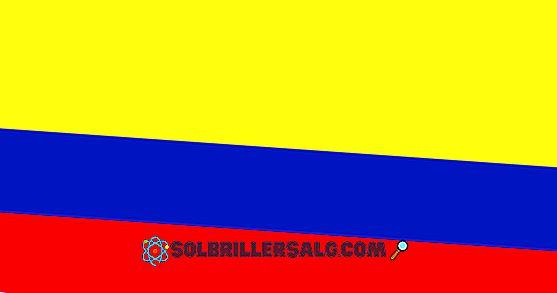 Flagge von Popayán: Geschichte und Bedeutung