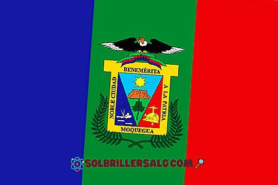 Flagge von Moquegua: Geschichte und Bedeutung