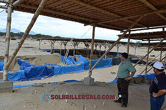 Histoire de Chiclayo: principales caractéristiques
