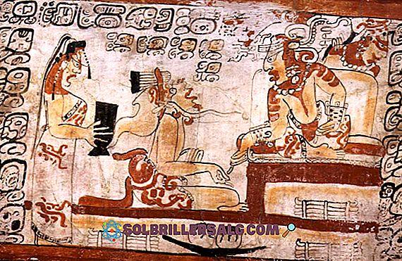 Wie war die Maya-Regierung?