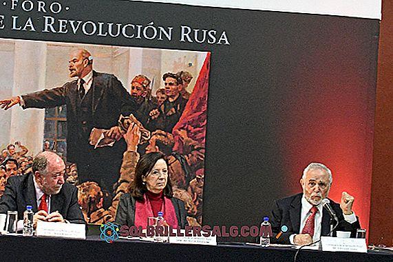 Bolscevichi: origine storica, caratteristiche socio-politiche